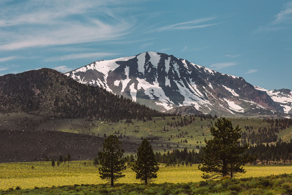 Private jet to Mammoth Lakes with snowy mountains and green fields