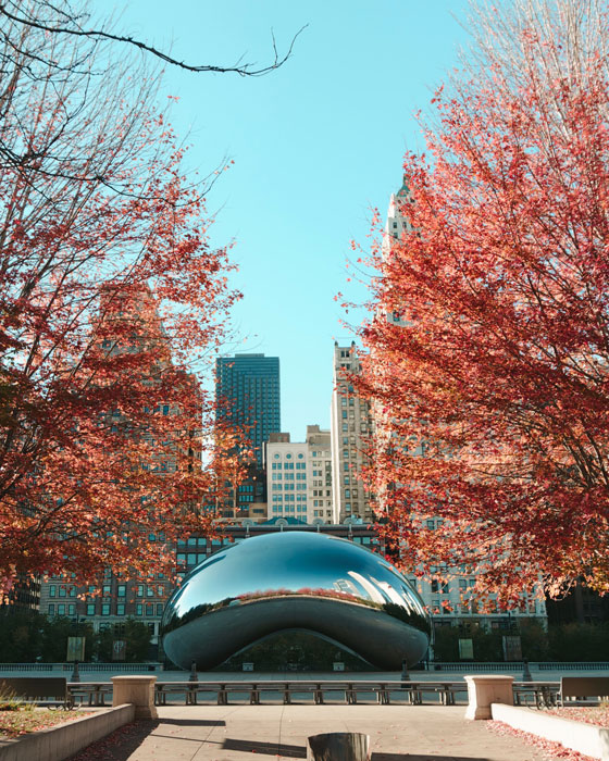 private jet to Chicago with a silver bean and red trees and skyscrapers